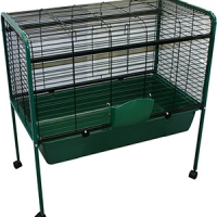 Rabbit Hutch 88.5 x 50 x 90.5cm With Wheels Green